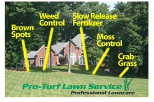 Pro Turf Lawn Service Uses the Best Fertilizer in the Industry